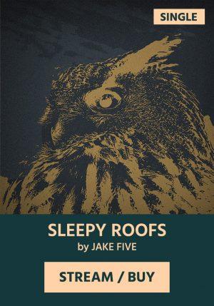 Jake Five - Sleepy Roofs - Summer Night Blues